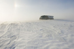 truck hauling grain on road covered with blowing snow, near Morris, Manitoba, Canada