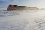 train, blowing snow, near Morris, Manitoba, Canada