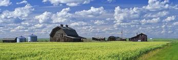 abandoned farm near Ponteix, Saskatchewan, Canada
