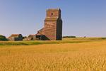wheat field, old grain elevator, abandoned town of Bents, Saskatchewan, Canada