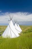 Tipis, The Crossing Resort, edge of the Grasslands National Park, near Val Marie, Saskatchewan, Canada