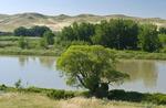 South Saskatchewan River Valley near Estuary,  Saskatchewan, Canada