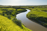 Frenchman River; West Block, Grasslands National Park, Saskatchewan, Canada