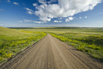 road through West Block, Grasslands National Park, Saskatchewan, Canada