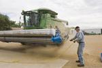 a farmer cleans barley debris from a stripper header on a combine parked in his farmyard, near Ponteix, Saskatchewan, Canada