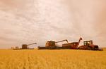 a combine augers durum wheat in to a grain wagon near Ponteix, Saskatchewan, Canada