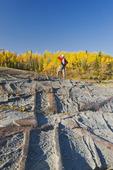 autumn, hiker on precambrian shield rock along the Winnipeg River, near Seven Sisters, Manitoba, Canada