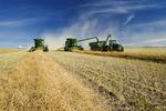 a combine unloads into a grain wagon on the go, during the canola harvest near Kamsack, Saskatchewan, Canada
