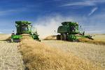 combine harvesters work in a canola field, near Kamsack, Saskatchewan, Canada
