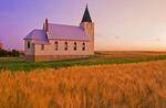 wheat field with church in the background, Admiral, Saskatchewan, Canada
