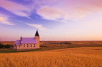 wheat field with church in the background, Admiral, Saskatchewan, Canada