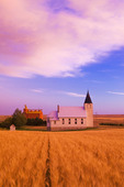 wheat field with church and grain elevator in the background, Admiral, Saskatchewan, Canada