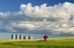 a farmer looks out over his barley crop with grain bins in the background and a sky with developing cumulonimbus clouds, Tiger Hills, Manitoba, Canada