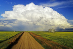 cumulonimbus cloud mass with gravel road, canola and grain bins in the foreground, near Bromhead, Saskatchewan, Canada