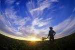 a farmer looks out over his maturing soybean crop at sunset, with dramatic cirrus clouds in the sky, near Lorette, Manitoba, Canada