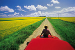 a man sits on the front of his truck overlooking a country road with blooming canola fields,  Tiger Hills, Manitoba, Canada