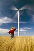 a man in a wind-blown spring wheat field viewing a wind turbine, near St. Leon, Manitoba, Canada