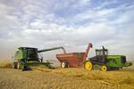 a combine unloads spring wheat into a grain wagon on the go, near St. Leon, Manitoba, Canada(both operators are female)