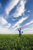 a man looks out over an early growth wheat field near Holland, Manitoba, Canada