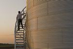 a man climbs a grain storage bin near Holland, Manitoba, Canada