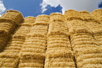 stacked wheat straw bales, near Winnipeg, Manitoba ,Canada