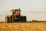 a tractor with a cultivator works soil containing grain stubble. near Lorette, Manitoba, Canada