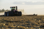 a tractor with a cultivator works soil near Lorette, Manitoba, Canada