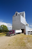 a farm truck leaves a grain elevator after delivering wheat, Ponteix, Saskatchewan, Canada