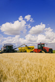 a combine harvester empties into a grain wagon on the go during the wheat harvest,  near Lorette, Manitoba, Canada