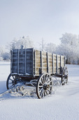 old wagon, hoarfrost on trees, near Cooks Creek, Manitoba, Canada