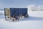 old wagon, hoarfrost on trees, near Oakband, Manitoba, Canada