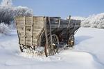 old wagon, hoarfrost on trees, near Oakband, Manitoba, Canada