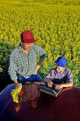 father and son chat next to a canola field while inputting data into a computer, near Carey, Manitoba, Canada