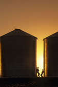 father and son chat next to grain bins, near Carey, Manitoba, Canada