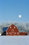 red barn , winter, Grande Pointe,  Manitoba, Canada