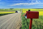 mailbox along country road with grain and canola fields in the background, near Holland, Manitoba, Canada,