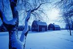 barns near Oakbank, Manitoba, Canada