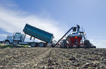 a farmer checks the fullness of the seed tank while loading his air till seeder with soybeans, near Lorette, Manitoba, Canada