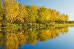 autumn, Whiteshell Provincial Park, Manitoba, Canada