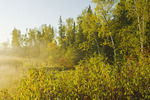 autumn along the Whiteshell River, Whiteshell Provincial Park, Manitoba, Canada