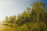 autumn along the Whiteshell River, Whiteshell Provincial Park, Manitoba, Canada
