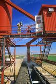 loading rail hopper cars at an inland grain terminal , Brunkild, Manitoba, Canada