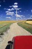 road through cropland containing wind turbines, near St. Leon, Manitoba, Canada
