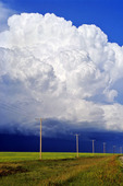 electricity poles with a cumulonimbus cloud mass in the background near Bromhead, Saskatchewan, Canada