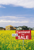farmland for sale sign in a bloom stage canola field with housing development in the background, Winnipeg, Manitoba, Canada