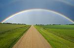 road through farmland, Tiger Hills, Manitoba, Canada
