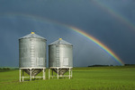 grain field with old grain hopper bins(silos) and rainbow in the background, Tiger Hills, Manitoba, Canada