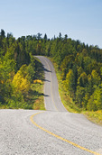 paved road going through forest, Lake of the Woods, Ontario, Canada