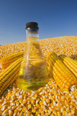harvested grain, corn  and  corn oil in a flask