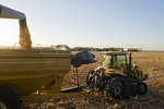 a combine empties into a grain wagon on the go, during the feed corn harvest, near Dugald, Manitoba, Canada